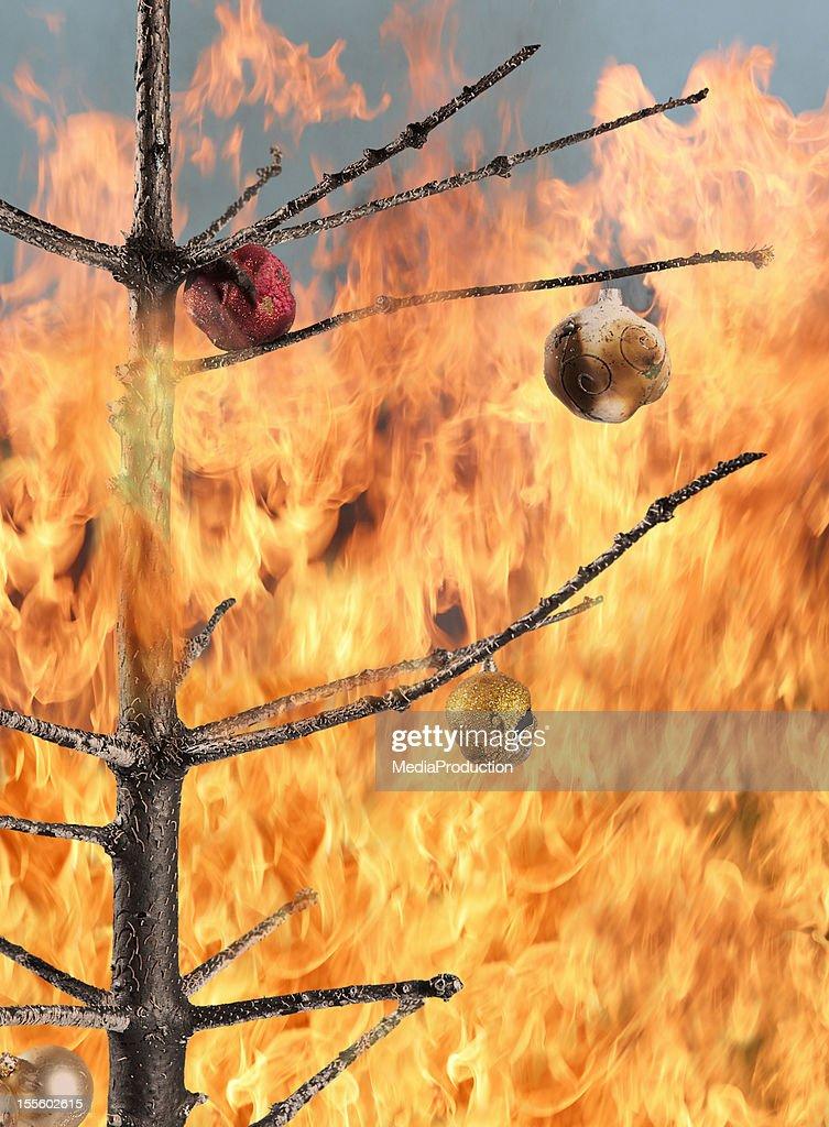 Christmas tree on fire : Stock Photo