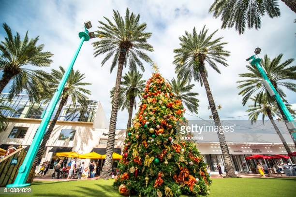 christmas tree on lincoln road mall, miami beach, usa - florida christmas stock pictures, royalty-free photos & images