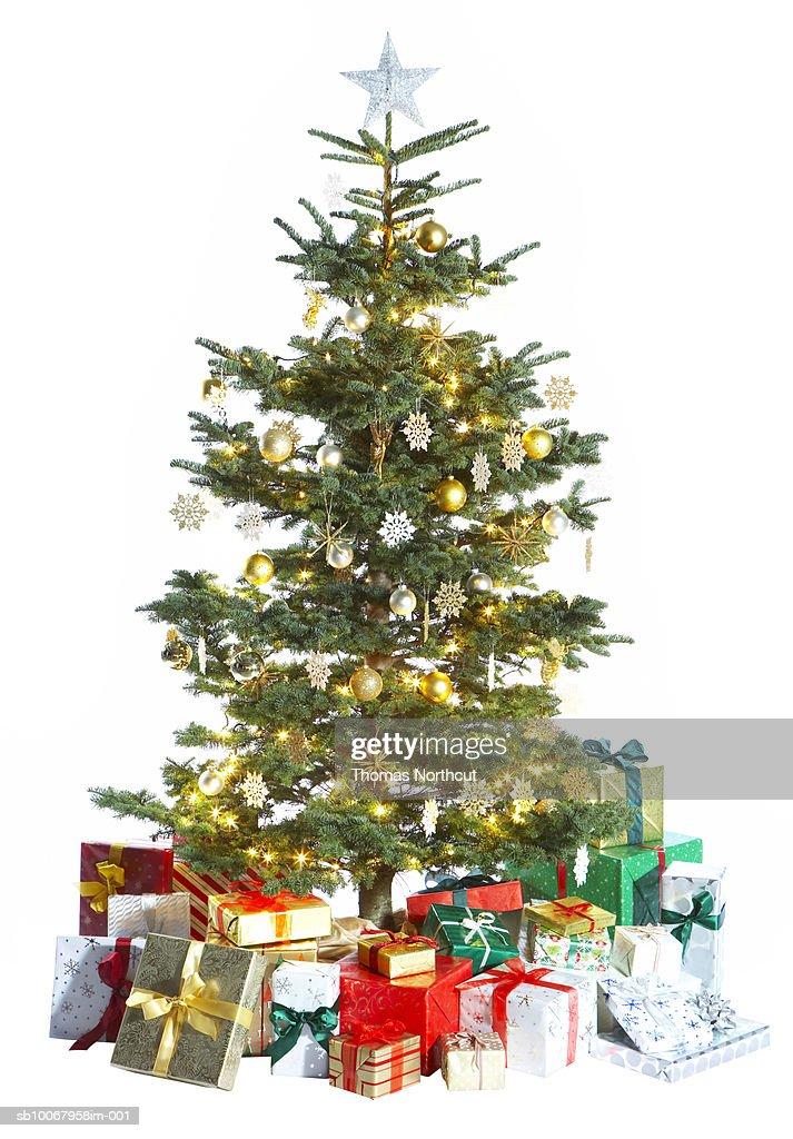 Christmas tree on white background : Stock-Foto