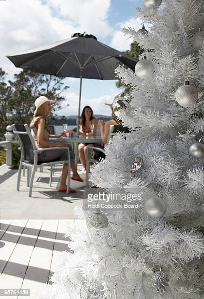 christmas tree outdoors - heidi coppock beard stock pictures, royalty-free photos & images