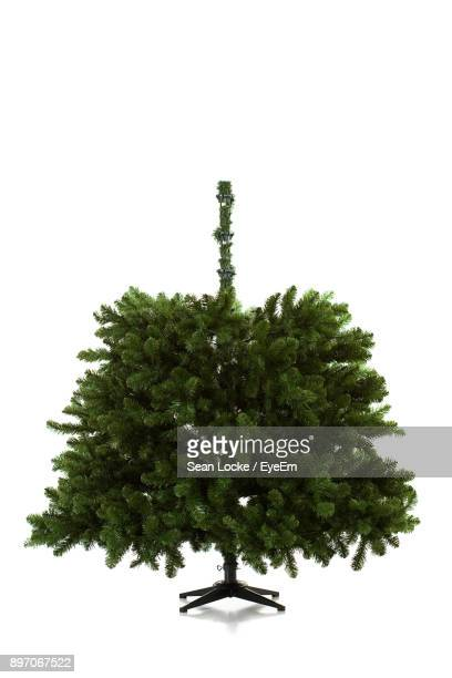 Christmas Tree Over White Background