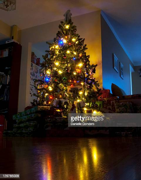 """christmas tree - """"danielle donders"""" stock pictures, royalty-free photos & images"""