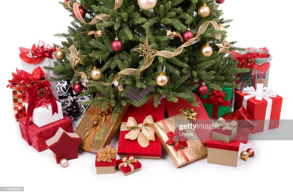 Christmas Tree (XXL) : Stock Photo