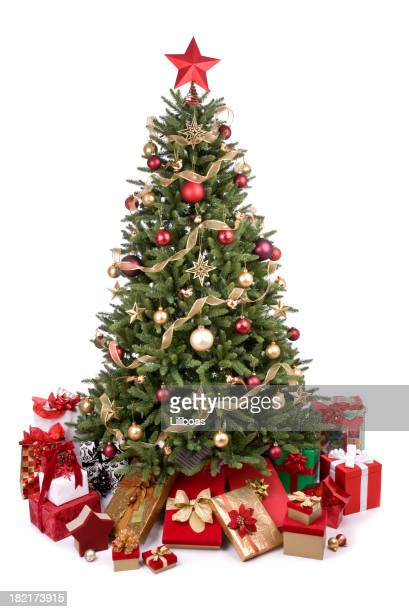 Image Christmas Tree.World S Best Christmas Tree Stock Pictures Photos And