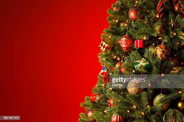 christmas tree - christmas tree stock pictures, royalty-free photos & images