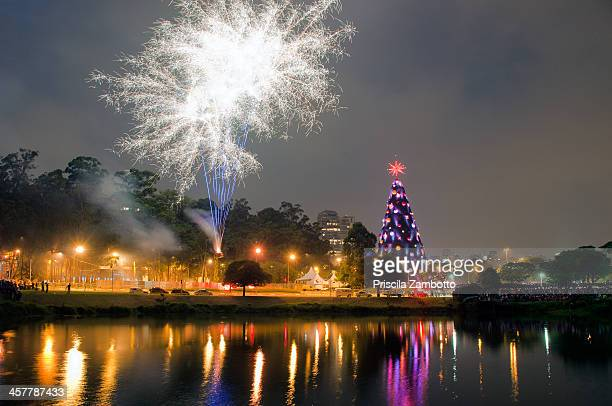 christmas tree - mere noel stock pictures, royalty-free photos & images