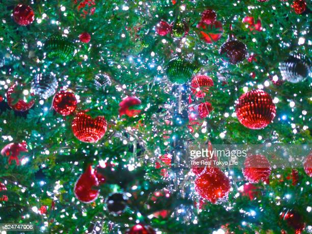 christmas tree - japanese tree stock photos and pictures