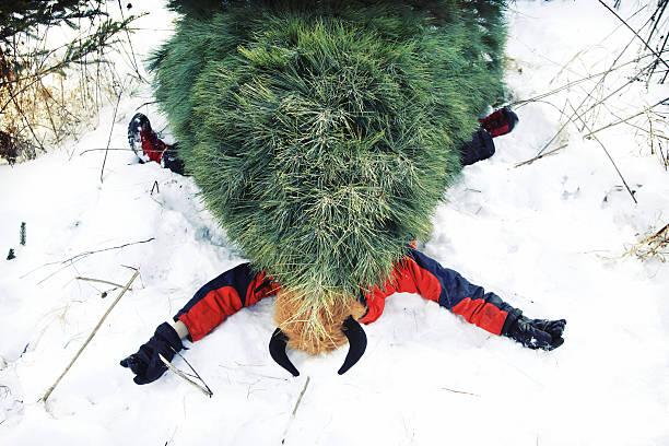 christmas tree essay scholarship