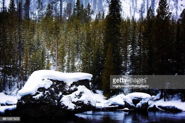 christmas tree rock - highlywood fotografías e imágenes de stock