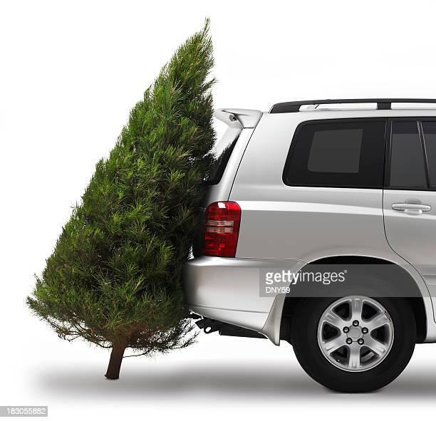 Weihnachtsbaum-Shopping