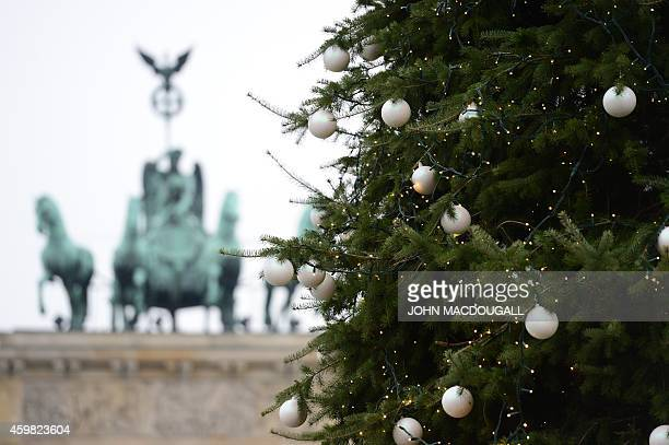 A Christmas tree stands in front of Berlin's landmark the Brandenburg Gate on December 2 2014 AFP PHOTO / JOHN MACDOUGALL