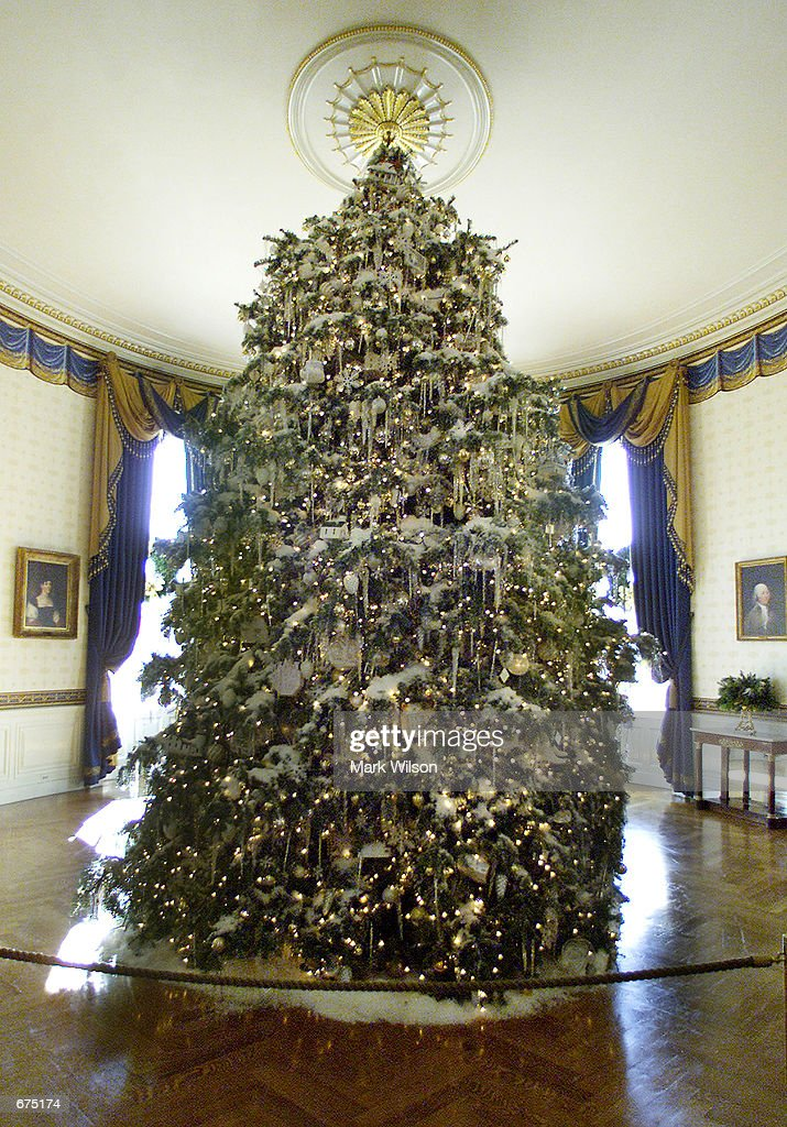 A Christmas Tree Stands In The Middle Of Blue Room White House December
