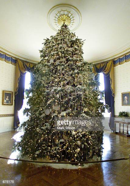 Christmas tree stands in the middle of the Blue Room in the White House December 3 2001 in Washington DC The First lady Laura Bush hosted a media...