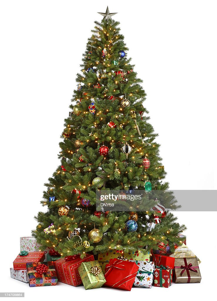 Pictures Of Christmas Trees.World S Best Christmas Tree Stock Pictures Photos And