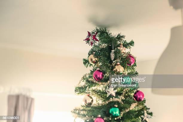 christmas tree touching ceiling - sapin de noel humour photos et images de collection