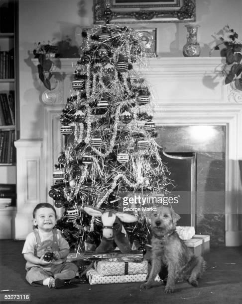 christmas tree with boy and dog - noel noir et blanc photos et images de collection