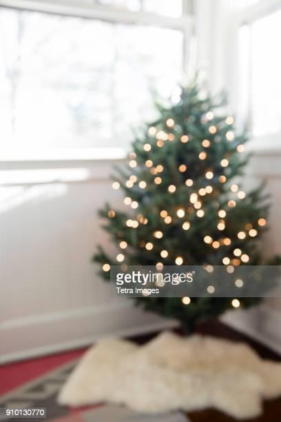 christmas tree with lights in sun porch - montclair stockfoto's en -beelden