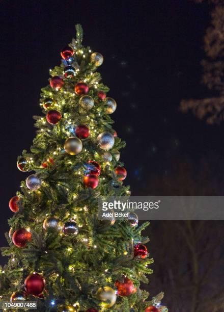 christmas tree with lights - クリスマスツリー ストックフォトと画像