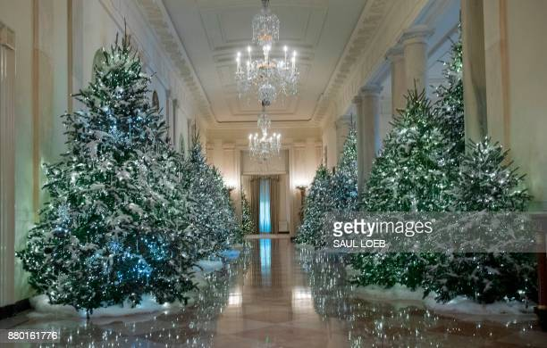 Christmas trees are seen during a preview of holiday decorations in the Cross Hall of the White House in Washington DC November 27 2017 / AFP PHOTO /...