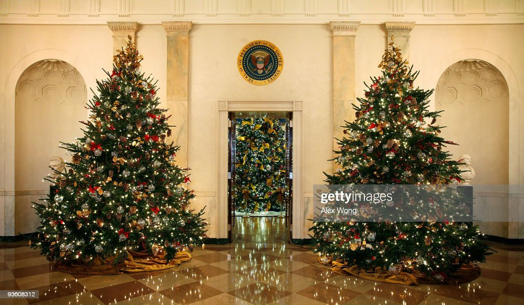 Christmas Trees Are Seen On The State Floor During The Media Preview Of The White  House
