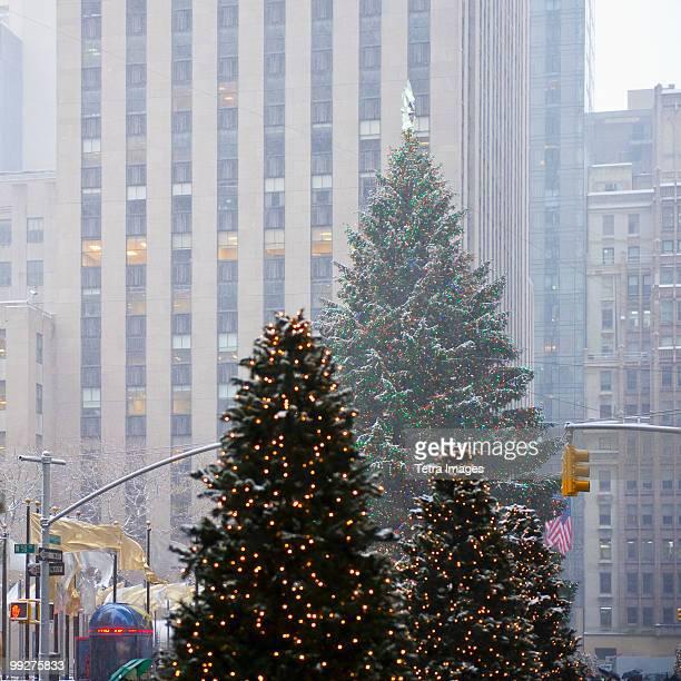 christmas trees downtown - new york weihnachten stock-fotos und bilder