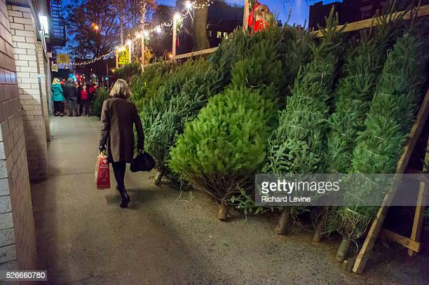 Christmas trees for sale in the New York neighborhood of Chelsea Because of high demand and short supply prices of Christmas trees are expected to be...