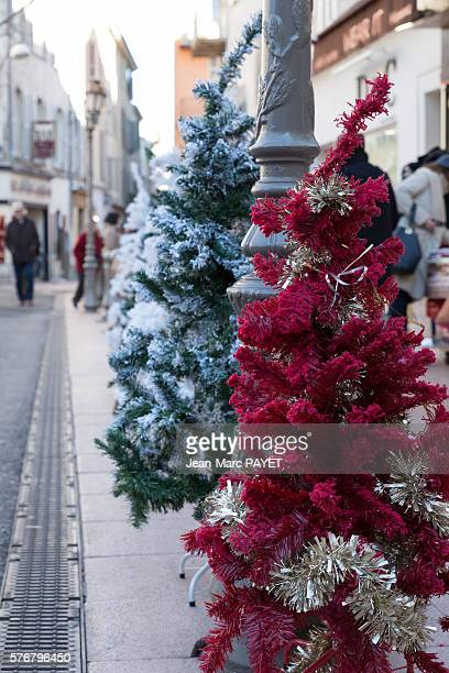 Christmas trees on the street