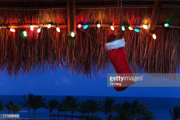 christmas vacation in the tropical caribbean beach hz - mexican christmas stock photos and pictures