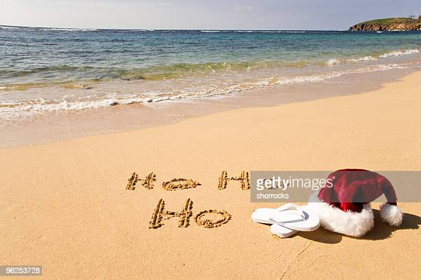 christmas vacation - hawaii christmas stock pictures, royalty-free photos & images