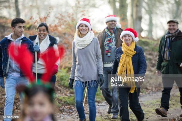 kerst wandeling - country christmas stockfoto's en -beelden