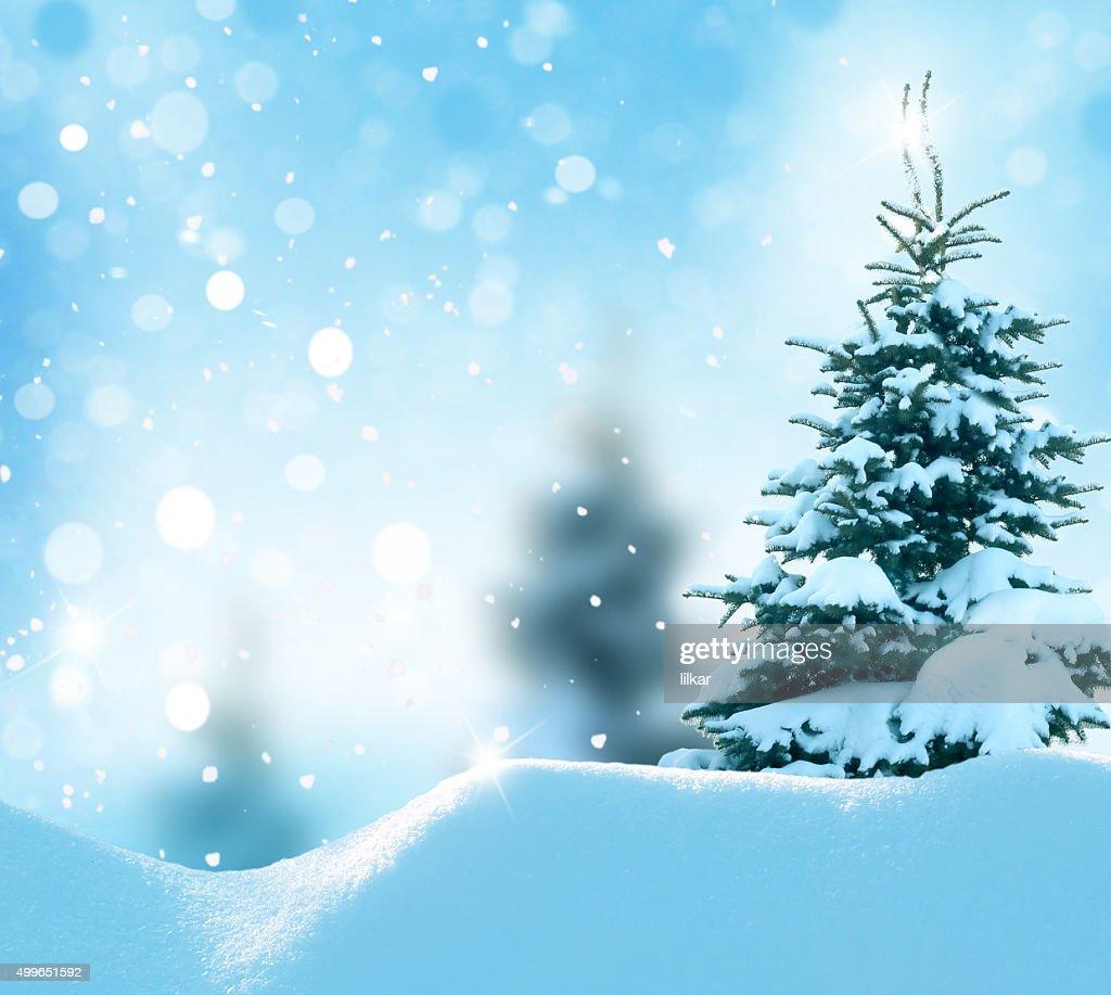 Foto Con La Neve Di Natale.Sfondo Di Natale Inverno Con La Neve E Sfocato Bokeh Foto Stock Getty Images