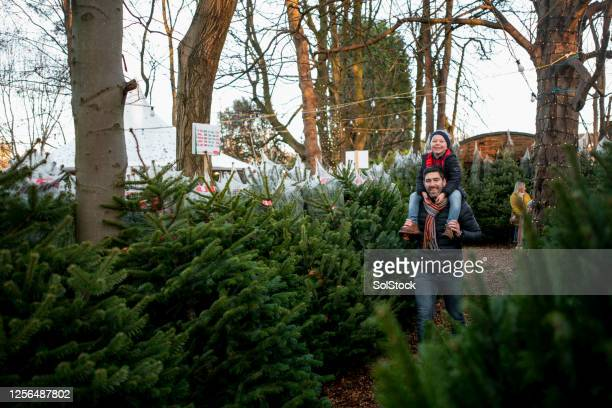 christmas with father - christmas tree stock pictures, royalty-free photos & images