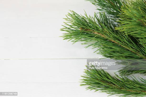 christmas wooden background with natural decoration, fir tree and cones. rustic wooden background, view from above. flat lay, top view. - pinaceae stock pictures, royalty-free photos & images