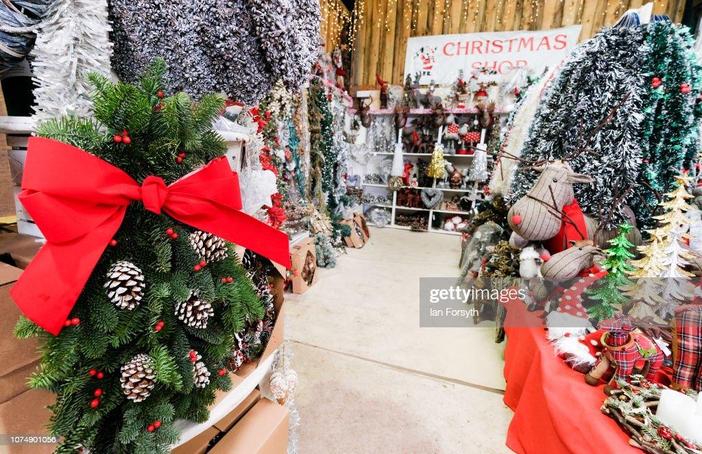 Christmas Wreaths And Other Seasonal