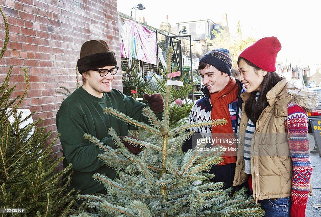 Christmastree salesman sells tree to couple. : Foto stock