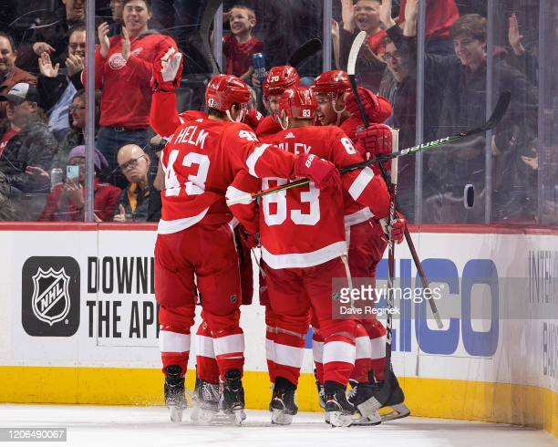 Christoffer Ehn of the Detroit Red Wings celebrates his second period goal with teammates Darren Helm Trevor Daley and Madison Bowey during an NHL...