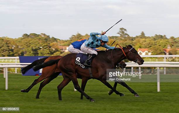 Christophe Soumillon riding Almanzor win The Qipco Irish Champion Stakes at Leopardstown racecourse on September 10 2016 in Dublin Ireland