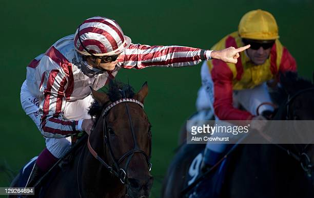 Christophe Soumillon riding Cirrus Des Aigles win The Qipco Champion Stakes at Ascot racecourse on October 15 2011 in Ascot England