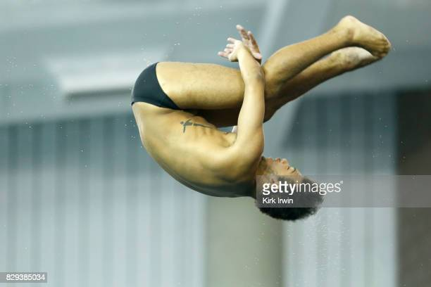 Christopher Law competes during the Senior Men's Platform Semifinal during the 2017 USA Diving Summer National Championships on August 10 2017 in...