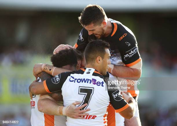 Christopher Lawrence of the Tigers celebrates with team mates after scoring a try during the round six NRL match between the Manly Sea Eagles and the...