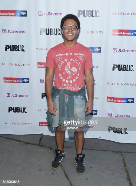 Christopher Livingston attends 'A Midsummer Night's Dream' Opening Night at Delacorte Theater on July 31 2017 in New York City