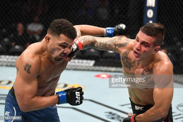 Christos Giagos punches Drakkar Klose in their lightweight bout during the UFC 241 event at the Honda Center on August 17, 2019 in Anaheim,...