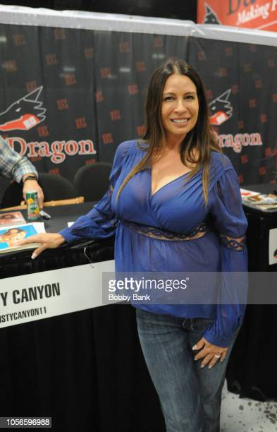 Christy Canyon appears at Exxxotica New Jersey 2018 at Expo Center on November 2, 2018 in Edison, New Jersey.
