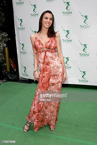 """Christy Carlson Romano during Opening Night of the Broadway Musical """"Tarzan"""" - Red Carpet at Richard Rogers Theatre in New York, New York, United..."""