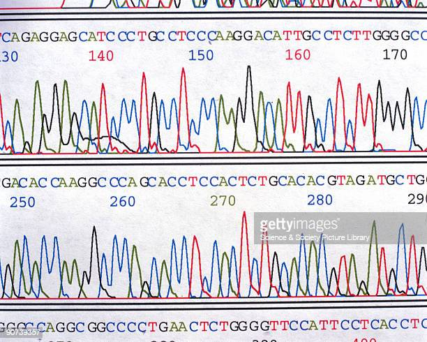 A chromatograph from the human genome mapping project carried out by the Medical Research Council in Cambridge Maps like these plot the position of...