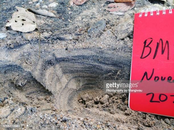 chromite sand - 浚渫 ストックフォトと画像