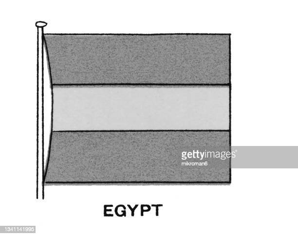 chromolithograph of ancient egypt flag - chromolithograph stock pictures, royalty-free photos & images