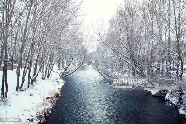 Chronicles winter