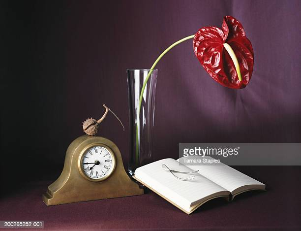 Chrysanthemum, book, wishbone, and clock on table