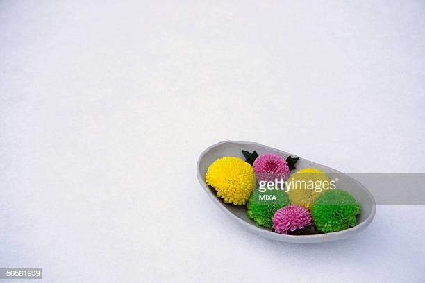 Chrysanthemum in a plate